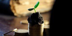 Profitabilnost državnog sektora
